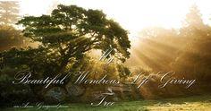My Beautiful, Wondrous, Life Giving Tree