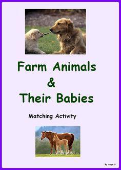 Farm Animals & Their Babies. Matching Activity