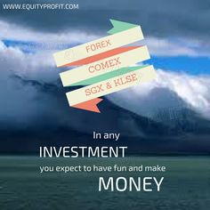 In any Investment you expect to have fun and make money- www.equityprofit.com Investment Quotes, Investing, How To Make Money, Fun, Hilarious