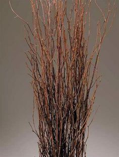 Decorative Birch Branches are great for putting up for decorations.