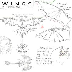 how to draw a dragon - Drawing Tips Drawing Techniques, Drawing Tips, Drawing Reference, Drawing Ideas, Animal Sketches, Animal Drawings, Art Sketches, Dragon Base, Dragon Anatomy