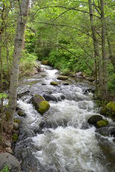 Lithia Park, Ashland, Oregon Taken by Teri Sutton saved by etsy.com/shop/OnceUponaTimeCo