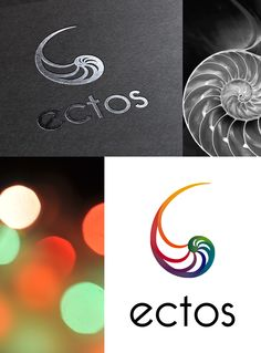 logo, coquillage, entreprise, agence communication, graphiste www.ehopdesign.fr