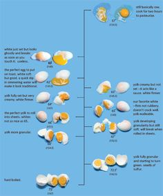 Egg Temperature Scale for Perfect Poached Eggs by cookingissues: What happens to eggs at various temperatures? All eggs were cooked in a water bath for 75 minutes (an hour is enough) at the temperature indicated. cooking guide recipe of cooking tips Meat Cooking Times, Cooking Recipes, Cooking Eggs, Cooking Turkey, Cooking Kale, Cooking Bacon, Recettes Martha Stewart, Egg Chart, Water Bath Cooking