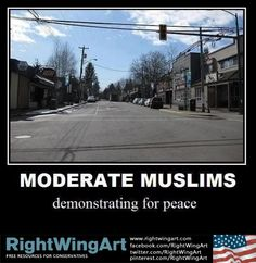 Moderate Muslims demonstrating for peace