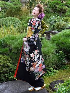 ノバレーゼ(NOVARESE) 伝統の和装姿【藤に雅楽鶴】