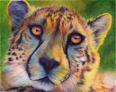 Cheetah Colors by Novawuff.deviantart.com on @deviantART