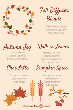Favorite Fall Essential Oil Blends   Our Good Life
