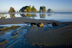 Shi shi beach, Washington. One of prettiest beaches in the world and camping there too!