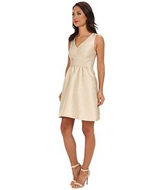 Adrianna Papell Women's V-Neck Party Dress w/ Bow Back Champagne Dress 6 Adrianna Papell http://www.amazon.com/dp/B00J5V27OC/ref=cm_sw_r_pi_dp_xY0Fub080TCH6