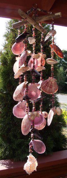 Sea Shell Wind Chime 10 Linear Nauticas & Nobilis by Eagle414