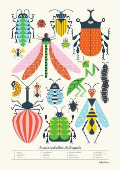 Loulou & Tummie poster insecten 70 x 100 cm