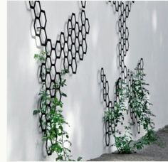 Fun way to do vines if we do concrete blocks with stucco....