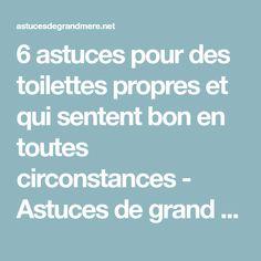 6 astuces pour des toilettes propres et qui sentent bon en toutes circonstances - Astuces de grand mère