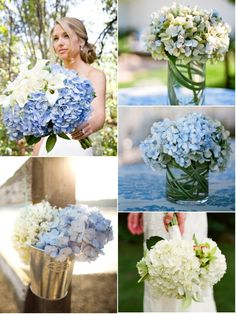 Hydrangeas everywhere! Yes!
