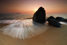Sea Clam by Bobby Bong on 500px