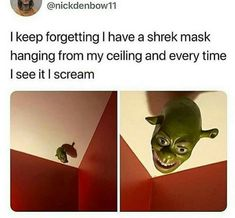 then take it down! wait why would u even have a shrek mask hanging from ur ceiling!?!?!?!?!