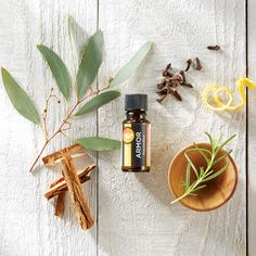Melaleuca PURE Essential Oils - Armour. This blend contains a harmonious mixture of cinnamon, clove, eucalyptus, lemon, and rosemary. It should be diluted with PURE Fractionated Coconut Oil or PURE Sweet Almond Oil before use as needed. It can diffused to help freshen, cleanse, and purify, diluted and massaged onto feet, or rubbed into the palms and inhaled. It can also be added to your favorite EcoSense® cleaning products.