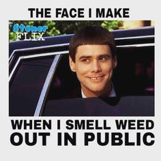 Weedpedia is your highest source of cannabis news, culture, and information. Check out the weed strain database and know what you're smoking! Funny Weed Memes, Weed Jokes, Vape Memes, Weed Humor, Cannabis, Drug Memes, 420 Memes, Stoner Quotes, Frases