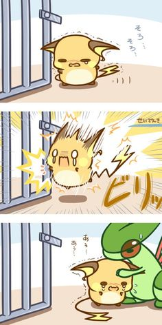 What Will Raichu Cause Static.