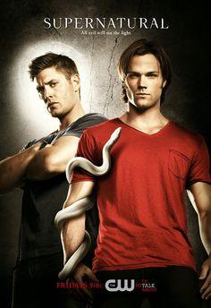 Assistir Supernatural 11 Temporada Dublado e Legendado