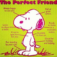 dogs are the perfect friends
