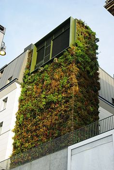 vertical garden by patrick blanc in france