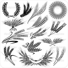 the 42 best viljapead images on pinterest draw wheat tattoo and