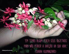 """""""Em tempo algum perca seus objetivos para não perder a direção da sua vida."""" (Sarah Kilimanjaro)"""