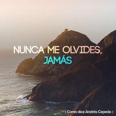 Como dice Andrés Cepeda.
