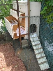 Seattle's 6 Coolest Chicken Coops (and 4 More from Around the Country)
