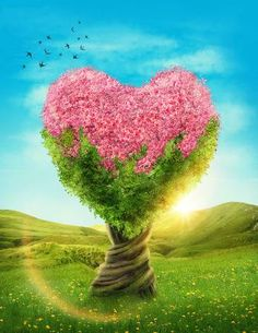 Picture of Fantasy tree house with light in the forest stock photo, images and stock photography. Heart Wallpaper, Love Wallpaper, Coeur Gif, Plant Background, Love Backgrounds, Heart Tree, Heart Pictures, Blossom Trees, Stock Foto
