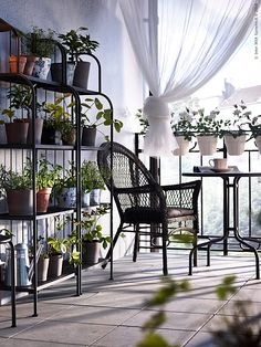 A small balcony with grey shelving units filled with green plants, a round table and a plastic rattan armchair IKEA Ikea Outdoor, Porch And Balcony, Hanging Plants Indoor, Apartment Garden, Balcony Decor, Ikea Garden Furniture, Garden Furniture, Home Decor, Home Furnishings