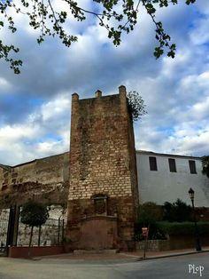 Portugal, Mansions, House Styles, Building, Travel, Home, Castles, Viajes, Buildings