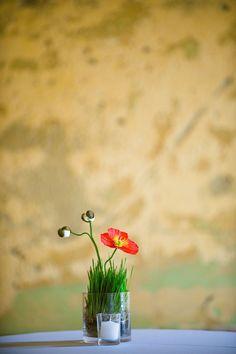 Chestnut & Vine Floral Design. Andi Hatch Photography