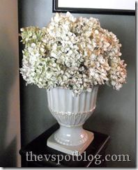 Drying Hydrangeas (she: Vivienne) Or so she says.: Drying Hydrangeas (she: Vivienne) Dried Flower Arrangements, Dried Flowers, Hydrangea Flower, Hydrangea Bush, Blue Food Coloring, Drying Hydrangeas, Flower Crafts, Decorating Your Home, Decorating Tips