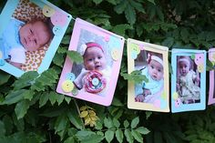Banner of pictures from each month of her first year