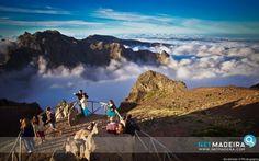Miradouro do Pico do Arieiro Portugal, Pico, Homeland, Places, Island, Photos, Lugares