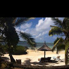 Goodmorning! Mauritius, Vacation Spots, Good Morning, Random Stuff, Patio, Outdoor Decor, Home Decor, Buen Dia, Random Things