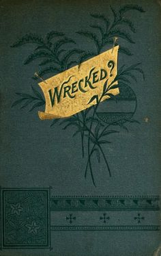 "William Osborn Stoddard 1883 ""Wrecked?: A Novel"""