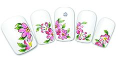 2014 New Water Transfer Nail Art Stickers Decal Beauty Pink Red Flowers Green Leaf Design French Manicure Foils Stamps Tools
