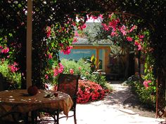 I think I want a Tuscan corner in my cottage garden. Molto bella.