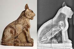 """""""O GRITO DO BICHO"""": O segredo das múmias animais do Egito Antigo"""