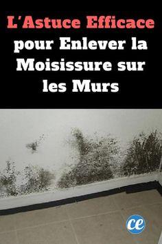 Comment éliminer les moisissures qui envahissent la maison | Taches de moisissure, Trucs et ...