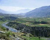 Colca Tours a Full Day To Colca canyon Tours