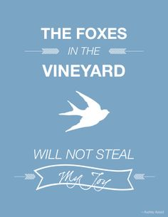 Catch for us the foxes, the little foxes that ruin the vineyards, our vineyards that are in bloom.  -Song of Solomon 2:15