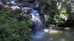 Picture of the waterfall Lacee and I jumped off of.