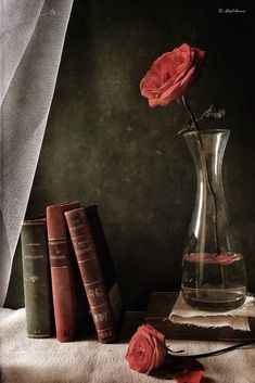 (notitle) The post appeared first on Fotografie. Object Photography, Still Life Photography, Book Photography, Creative Photography, Still Life Drawing, Still Life Art, Still Life Pictures, Dutch Still Life, Object Drawing