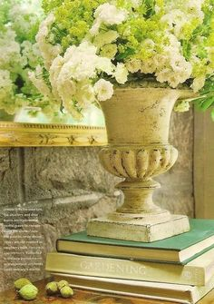 Garden urn with flowers on a stack of books