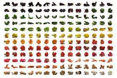Il y a deux saisons principales pour les fruits et légumes: la saison chaude et la saison fraîche. Il est dans l'intérêt du consommateur de manger des fruits et légumes de saison car ils sont plus sains et en général moins chers. Ils ont aussi plus de saveur, plus d'éléments nutritifs, et leur transport pollue moins.